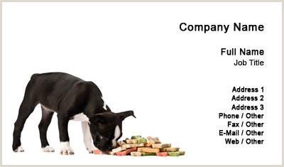 Unique Pet Sitting Business Cards Business Card Templates Pet Sitting